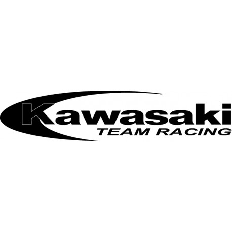 Kawasaki team racing